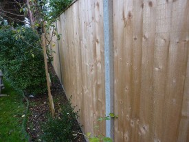 The close boarded fence